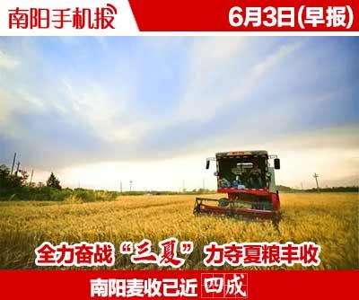 河南南阳:铁路线边夏收忙